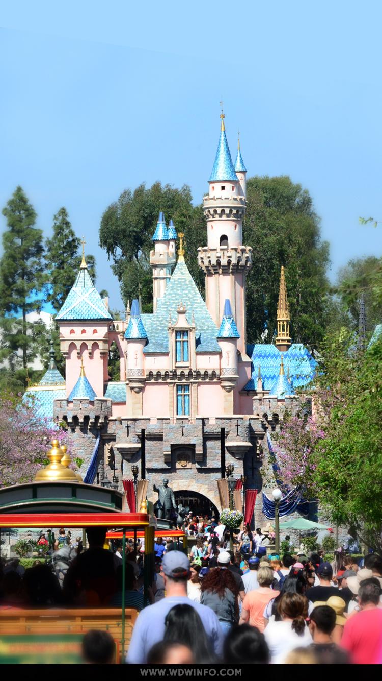 Disney World Disney World Wallpaper Iphone